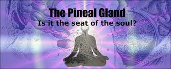 MYSTERY OF THE PINEAL GLAND