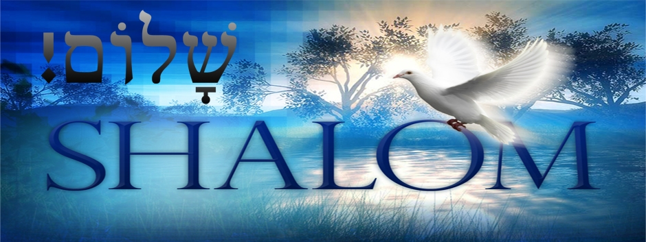 Shalom MP3 – .99