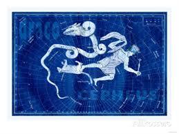 draco cepheus