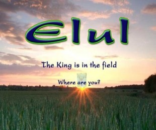 Month of Elul & the Tabernacle MP3